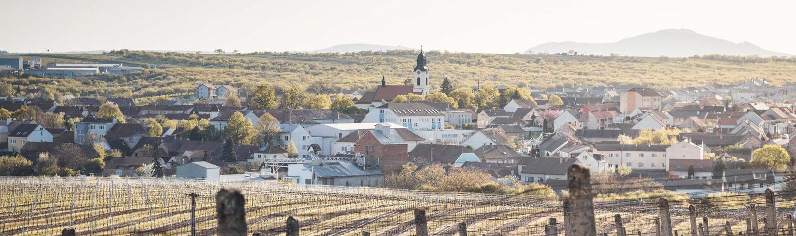 Velkopavlovická vinařská podoblast – Velké Pavlovice