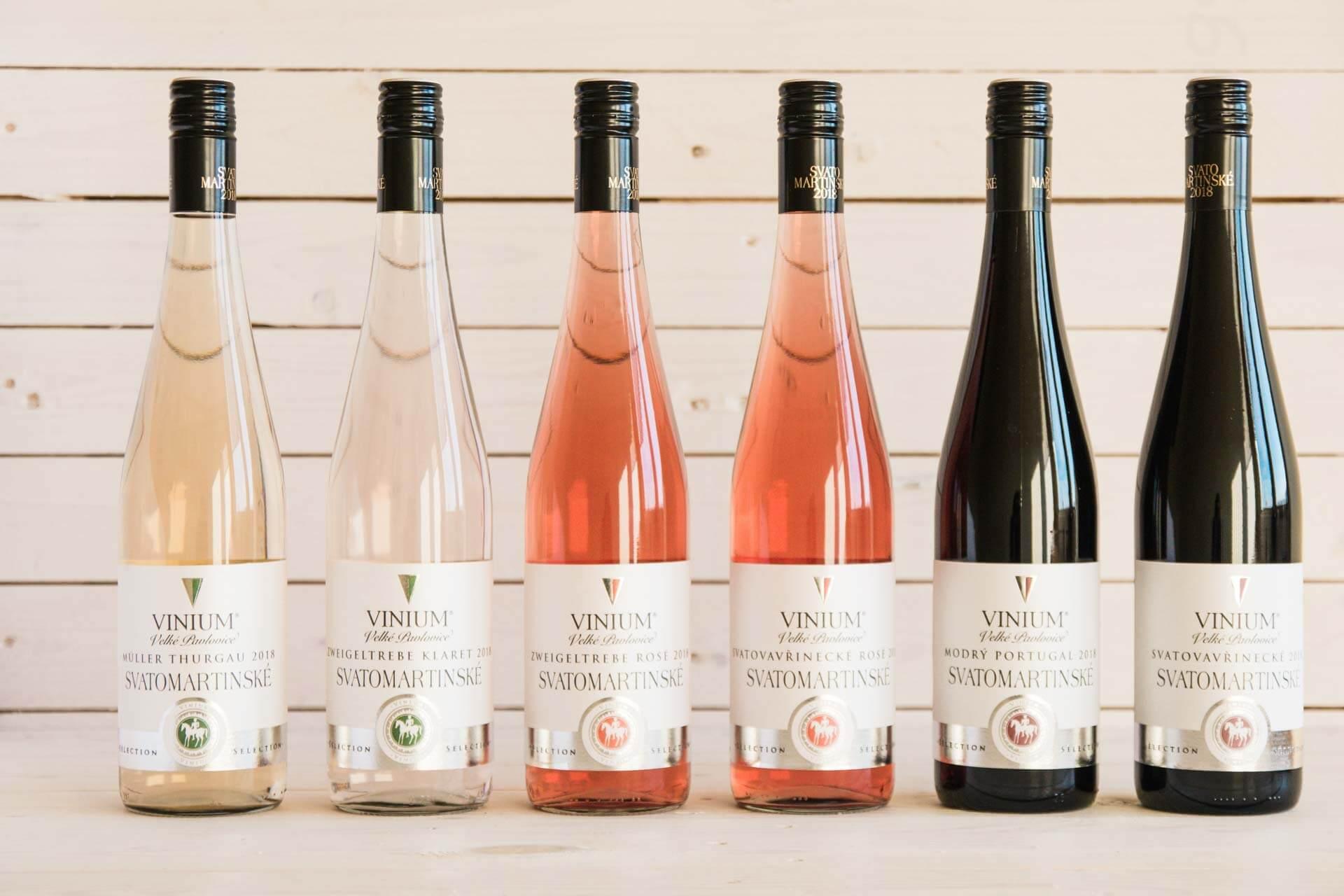 Foto ke článku 2, Svatomartinské víno, Müller Thurgau, Zweigeltrebe klaret, rosé, Svatovavřinecké, Modrý Portugal