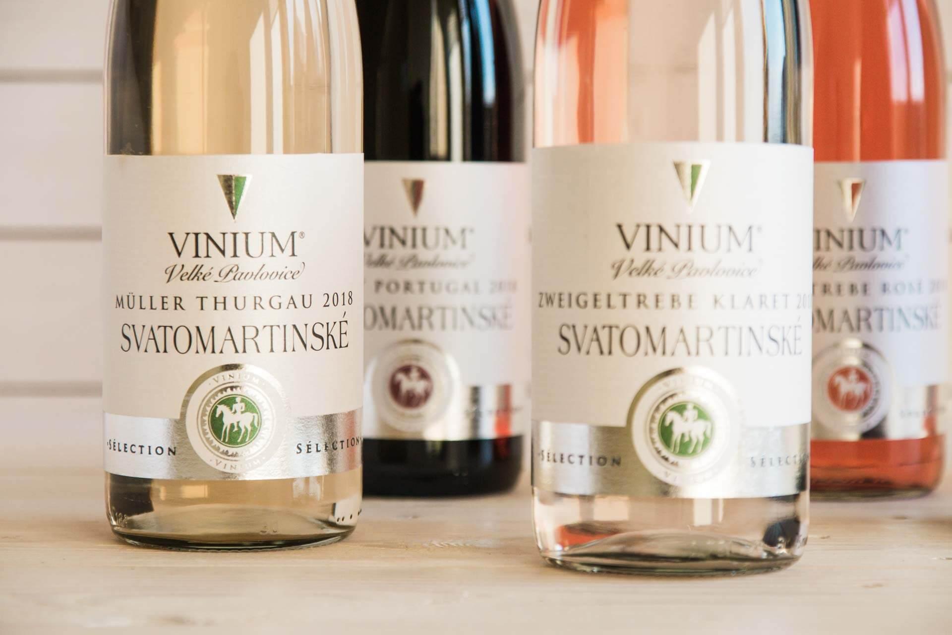 Foto ke článku 3, Svatomartinské víno, Müller Thurgau, Zweigeltrebe klaret, rosé, Svatovavřinecké, Modrý Portugal
