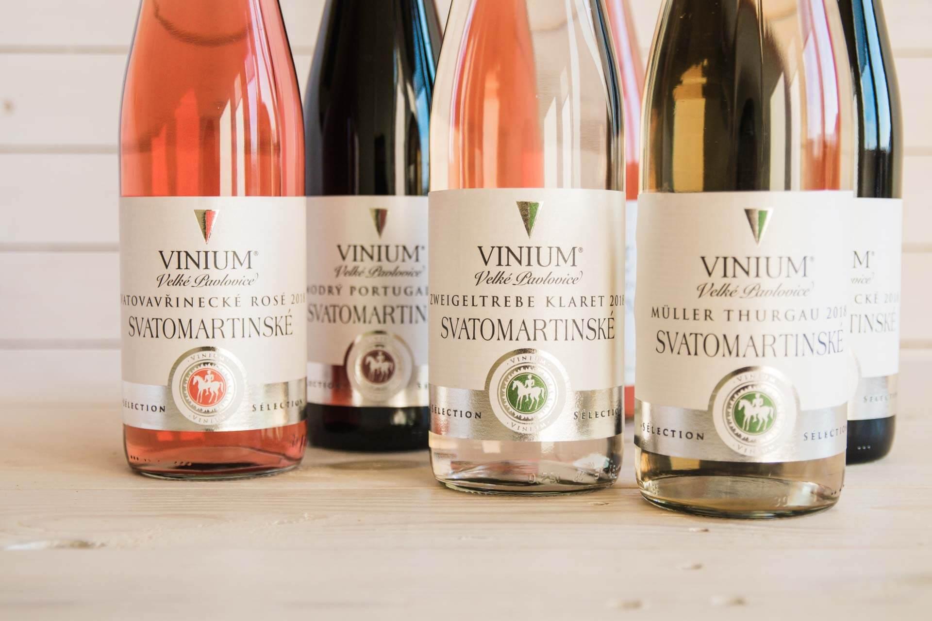 Foto ke článku 4, Svatomartinské víno, Müller Thurgau, Zweigeltrebe klaret, rosé, Svatovavřinecké, Modrý Portugal