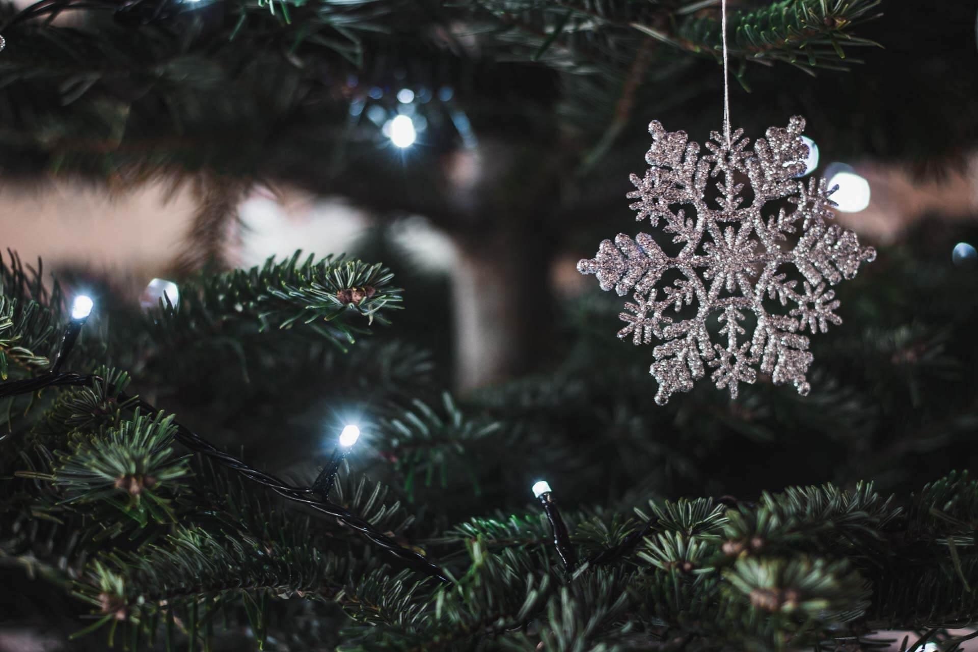 Foto ke článku 2, Vánoce, víno, štědrý den, štědrovečerní večeře