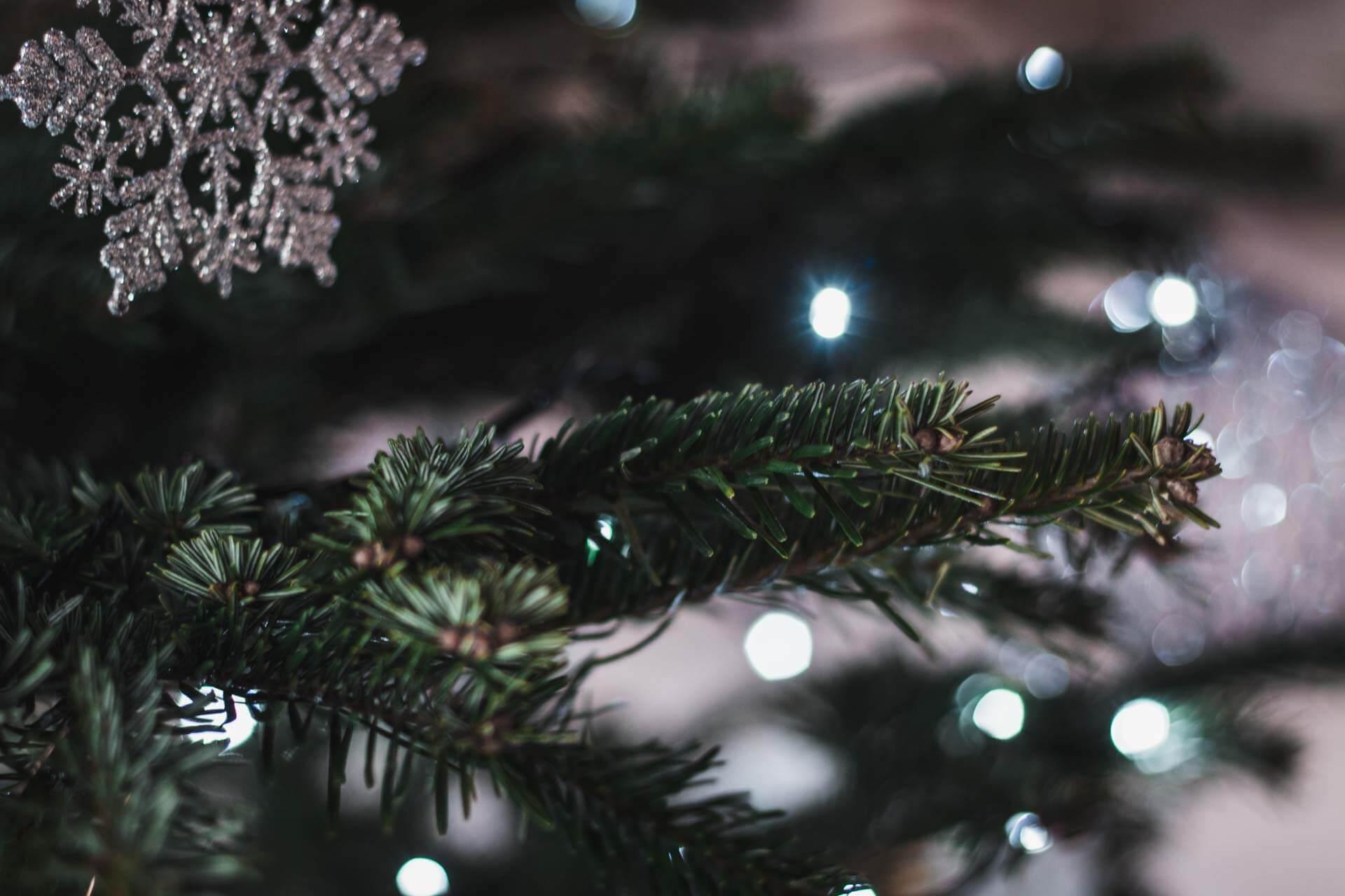 Foto ke článku 4, Vánoce, víno, štědrý den, štědrovečerní večeře