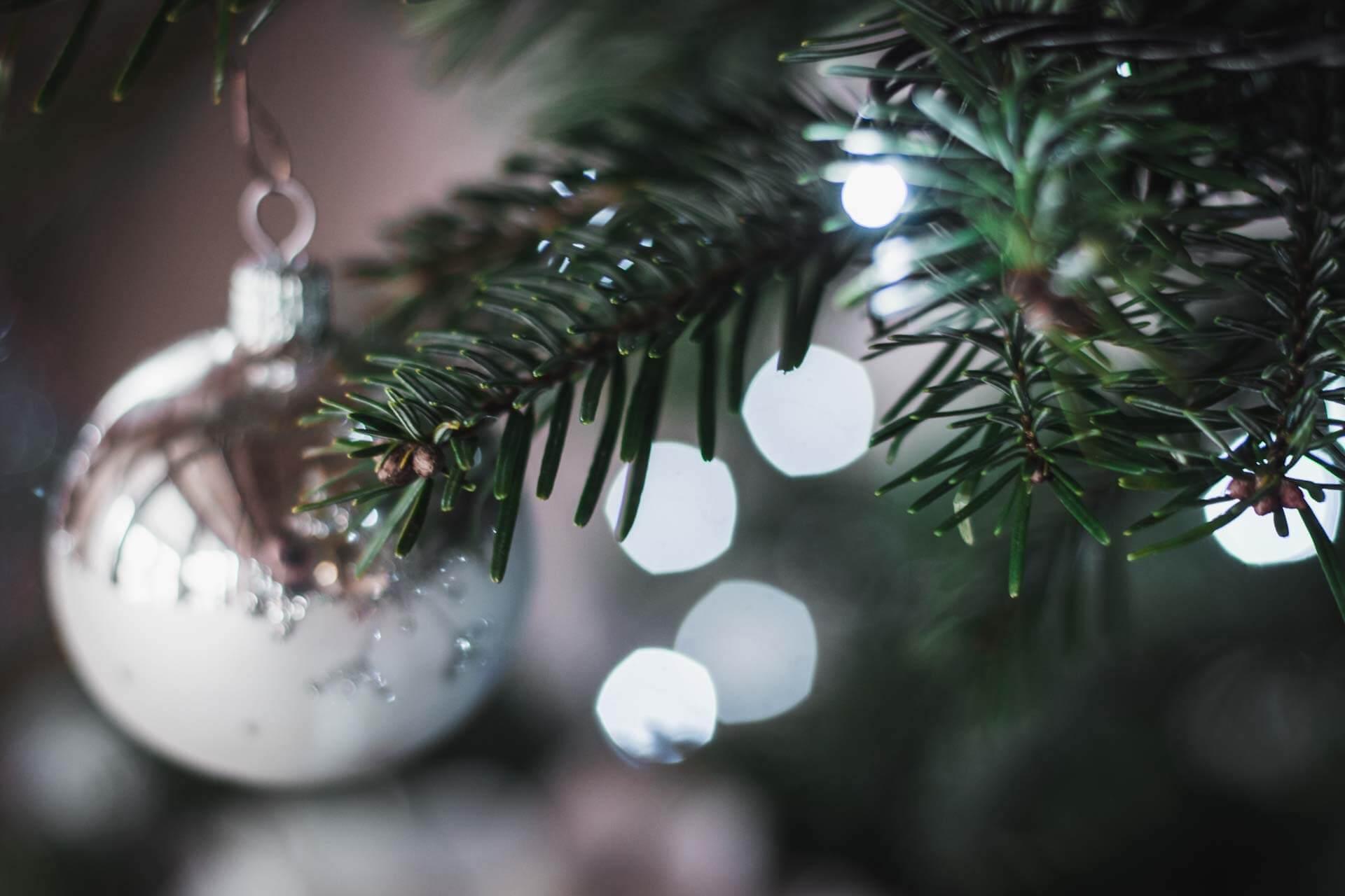 Foto ke článku 6, Vánoce, víno, štědrý den, štědrovečerní večeře