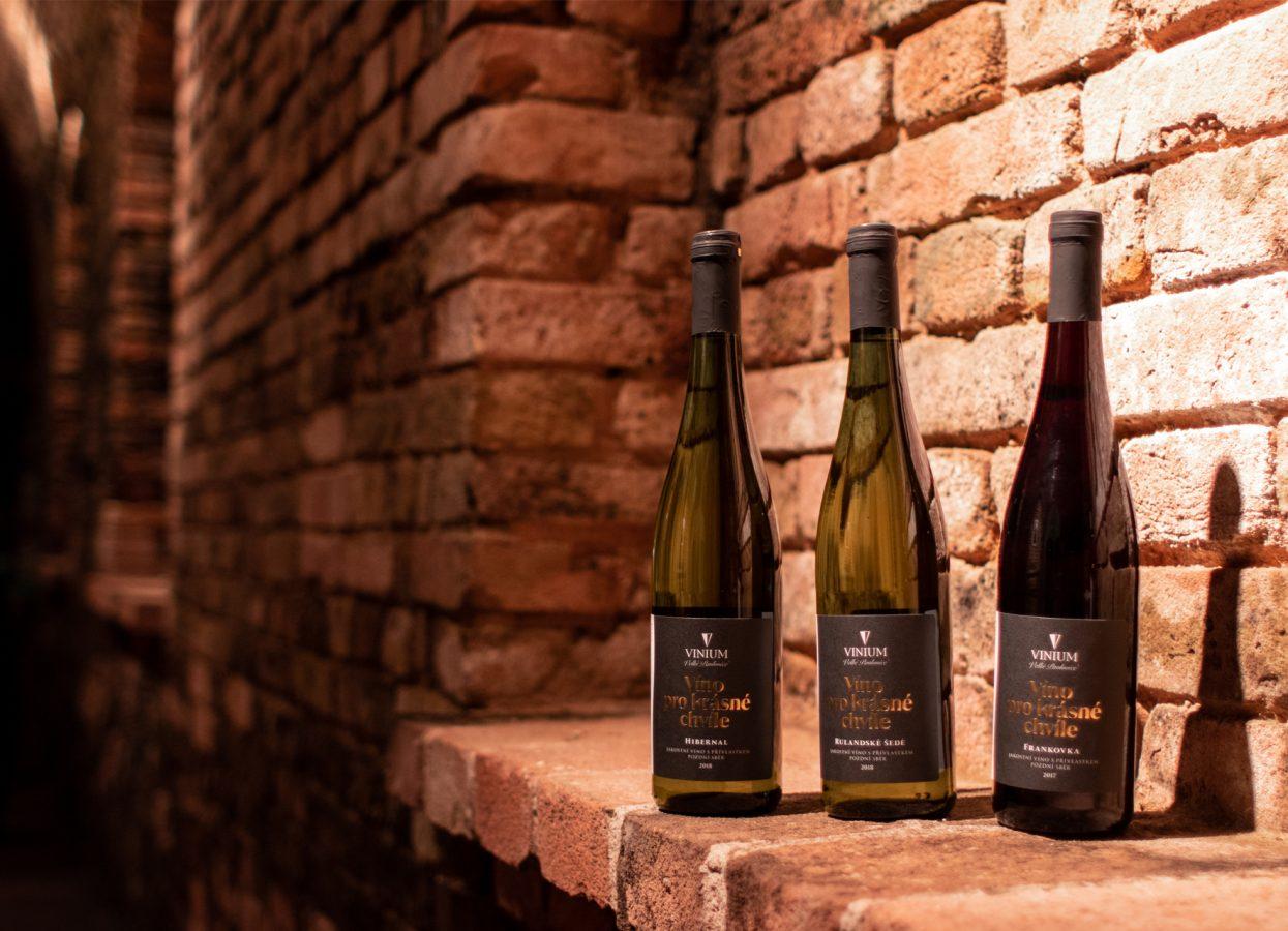 Foto 2, víno pro krásné chvíle 1, frankovka, červené víno, hibernal. rulandské šedé, bílé víno