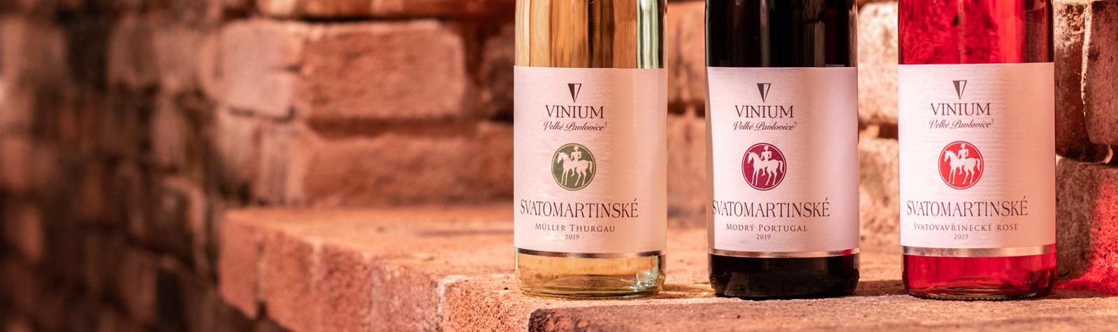 Svatomartinské víno 2019