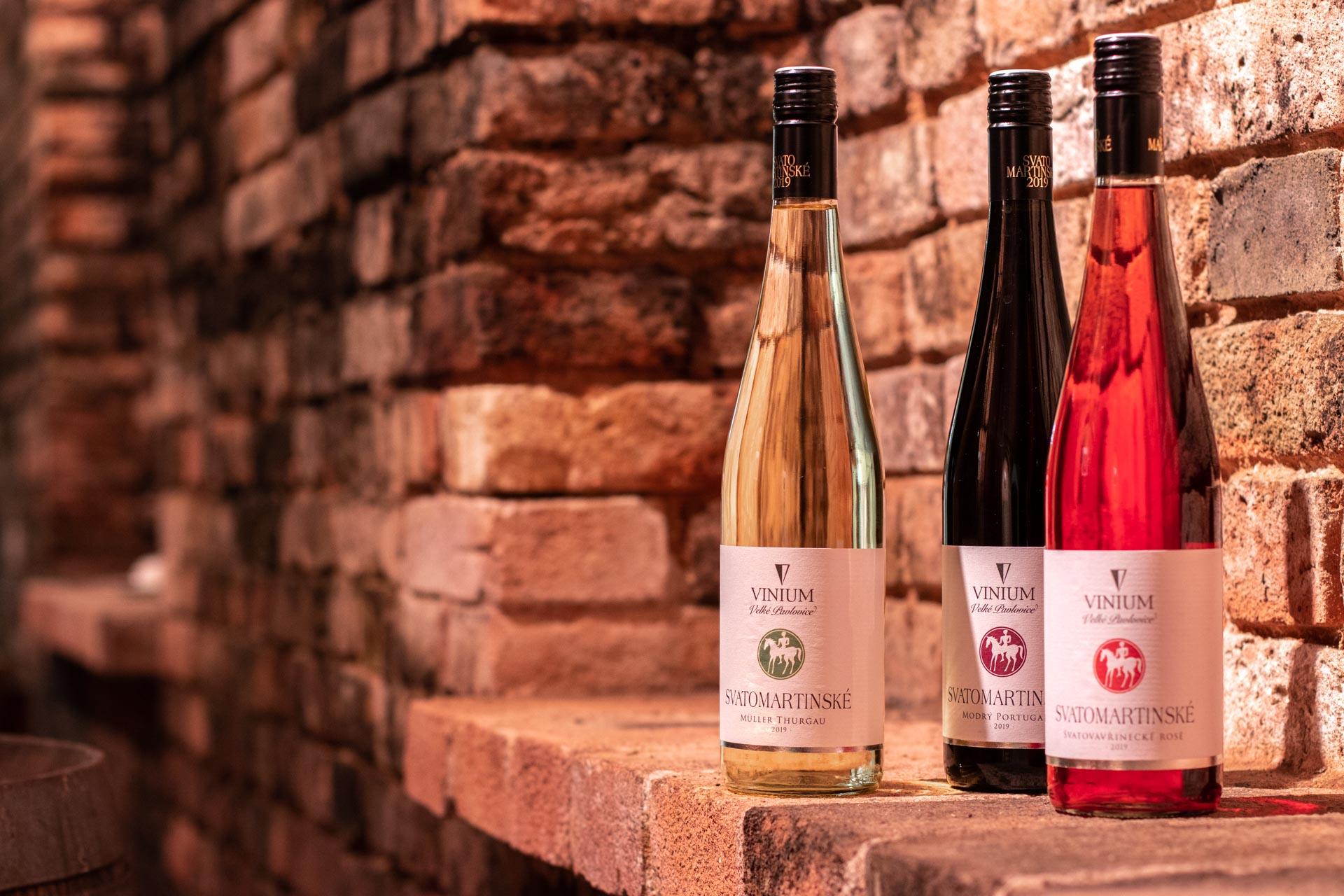 Svatomartinské víno 2019, VINIUM, bílé víno, červené víno, růžové víno