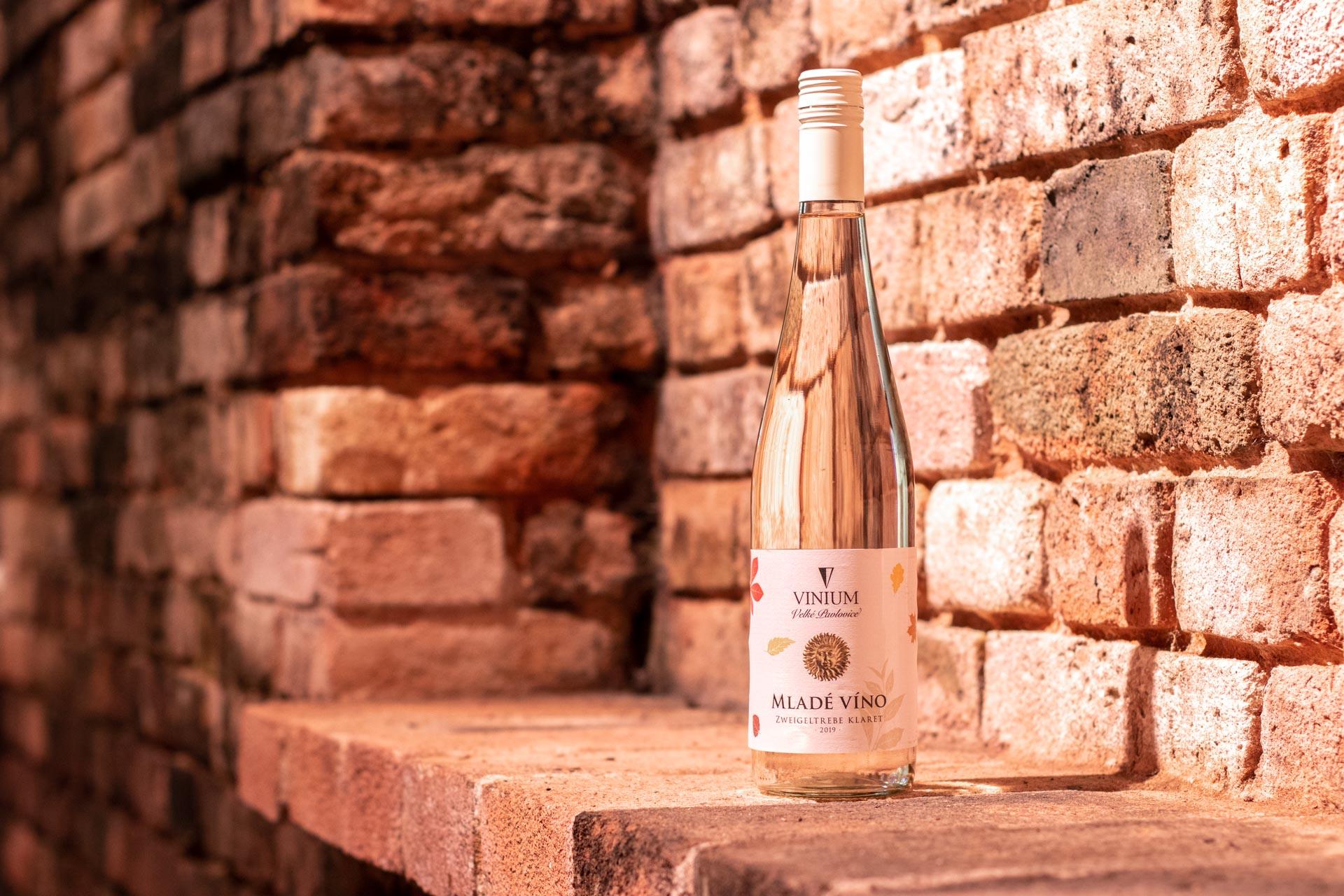 Mladé víno, Zweigeltrebe klaret, vinium velké pavlovice