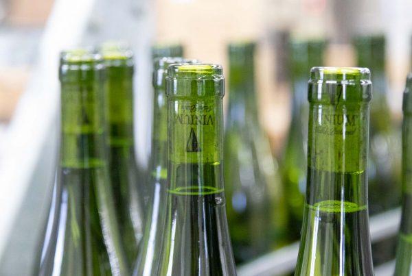 Lahvování vína, VINIUM, vinařství, foto ke článku