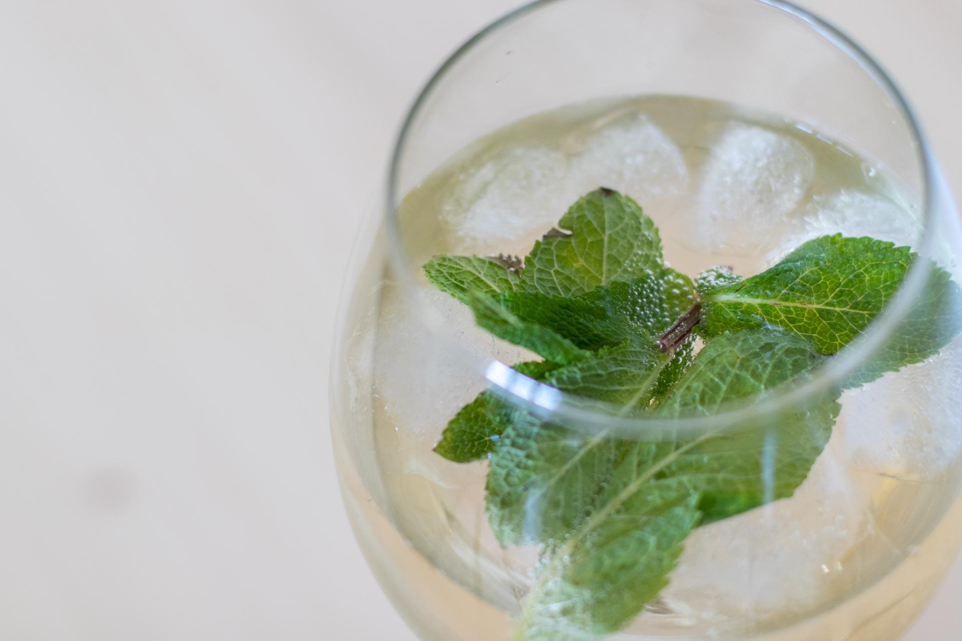 Letní drinky, Frizzante, máta, léto, osvěžení, VINIUM
