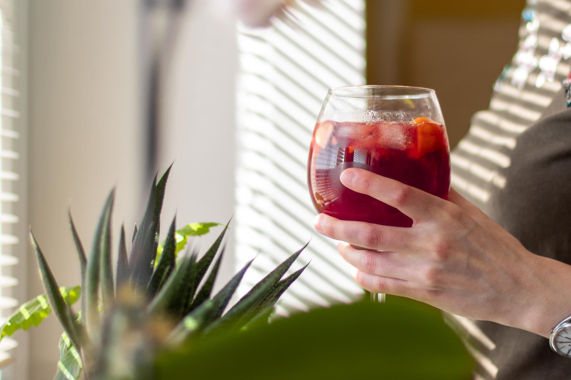 Sangria, recept, drink, červené víno, foto ke článku 3
