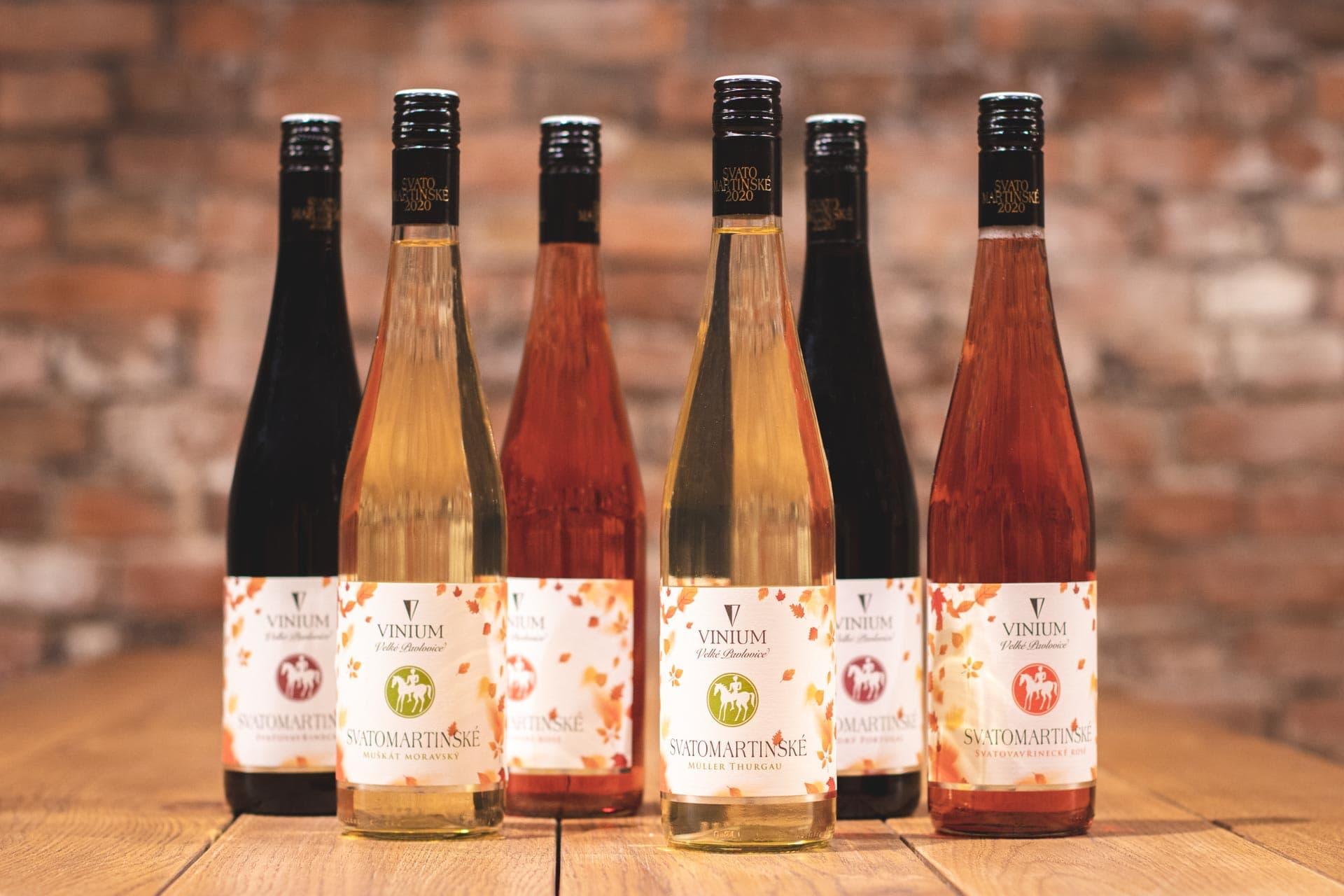 Svatomartinské víno, VINIUM, svatý Martin, mladé víno, bílé víno, červené víno, růžové víno