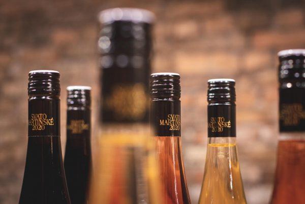 Svatomartinské víno, VINIUM, svatý Martin, mladé víno, bílé víno, červené víno, růžové víno, 2